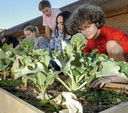 Providence Day School Receives NC Green School Award